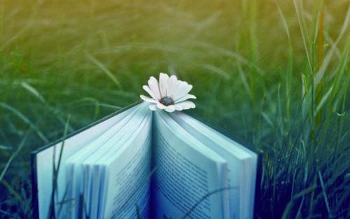 人间有味是读书